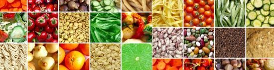 Dietary Fiber Section Header
