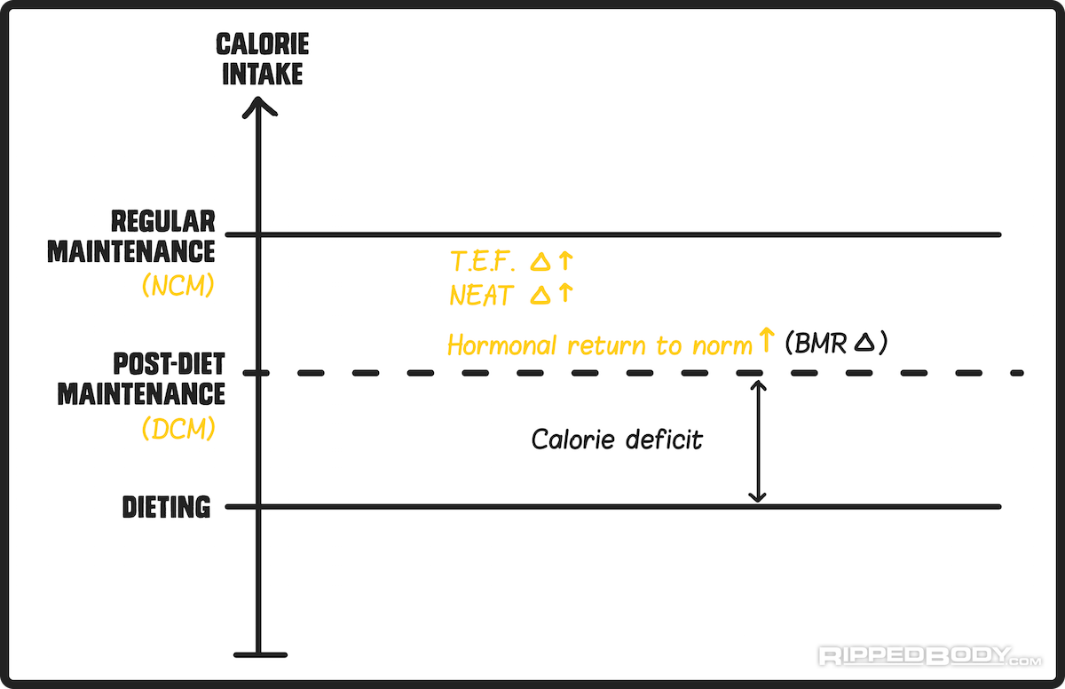 Maintenance (Long-Term) Diet After Bariatric Surgery