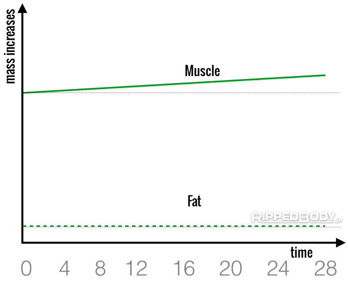 Fig 7. The Changes in Muscle And Fat Mass Over Time With The Lean Gain Method