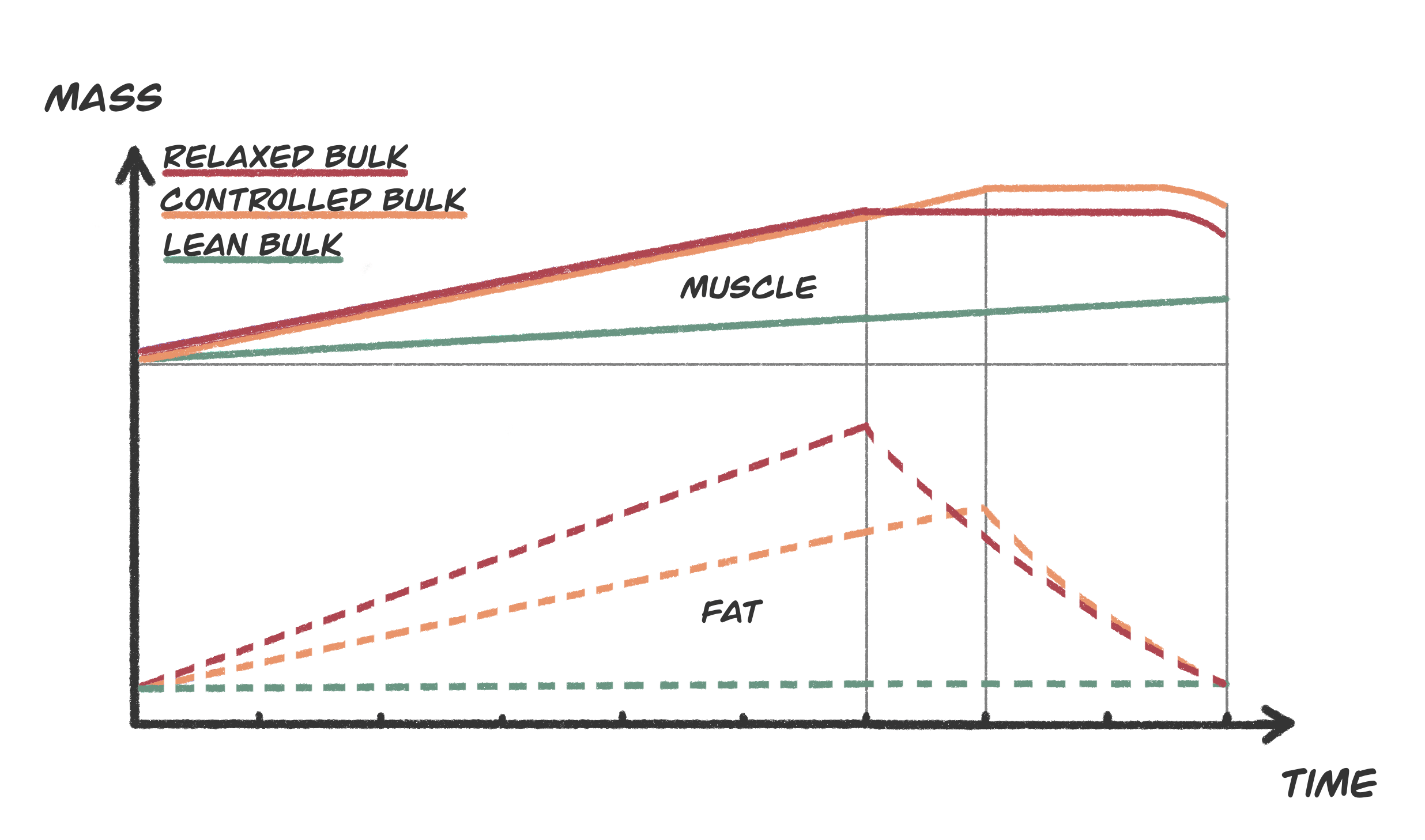Comparing Bulking Styles